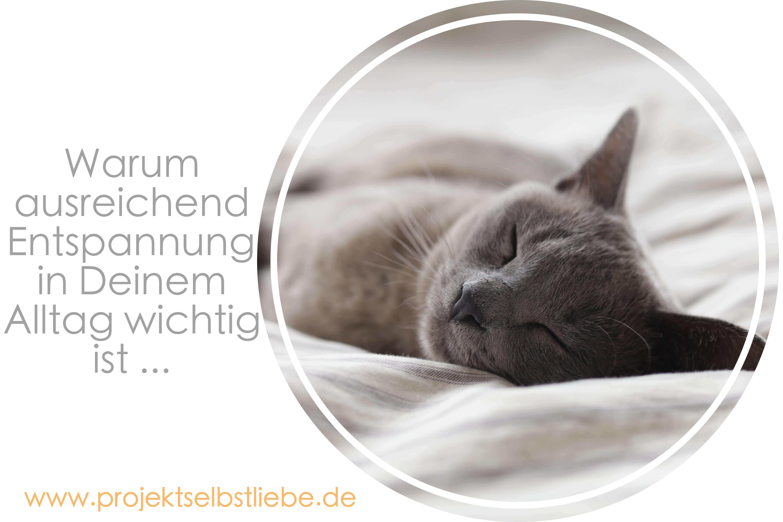 Warum ausreichend Entspannung in Deinem Alltag wichtig ist ...